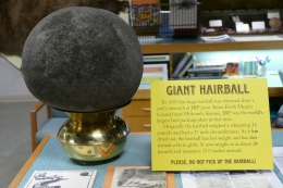 And the showstopper - the Giant Hairball!